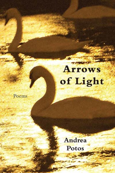 Arrows of Light cover