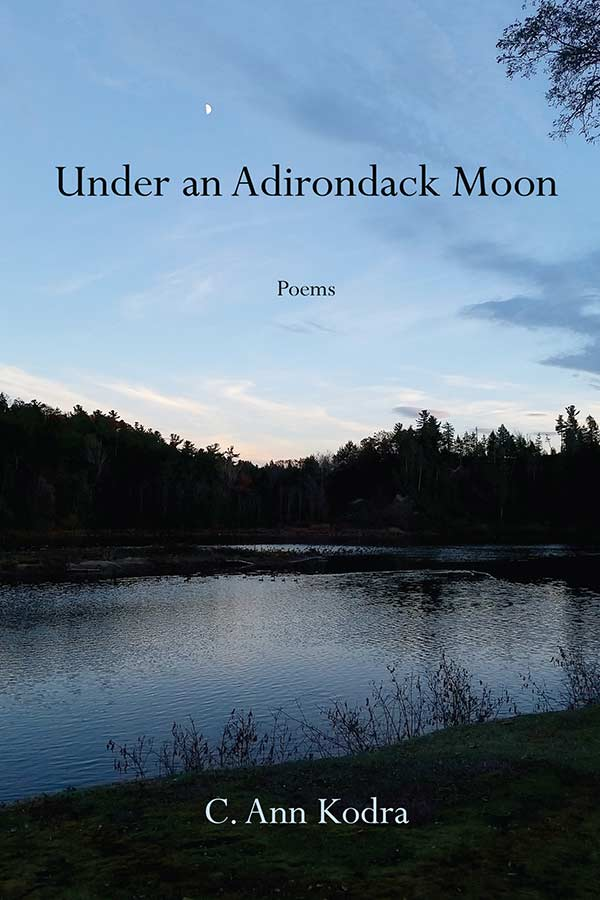 Under an Adirondack Moon cover